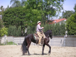 Ricky Quinn riding a horse that has never had a rider on its back... After only several hours of ground work!!!